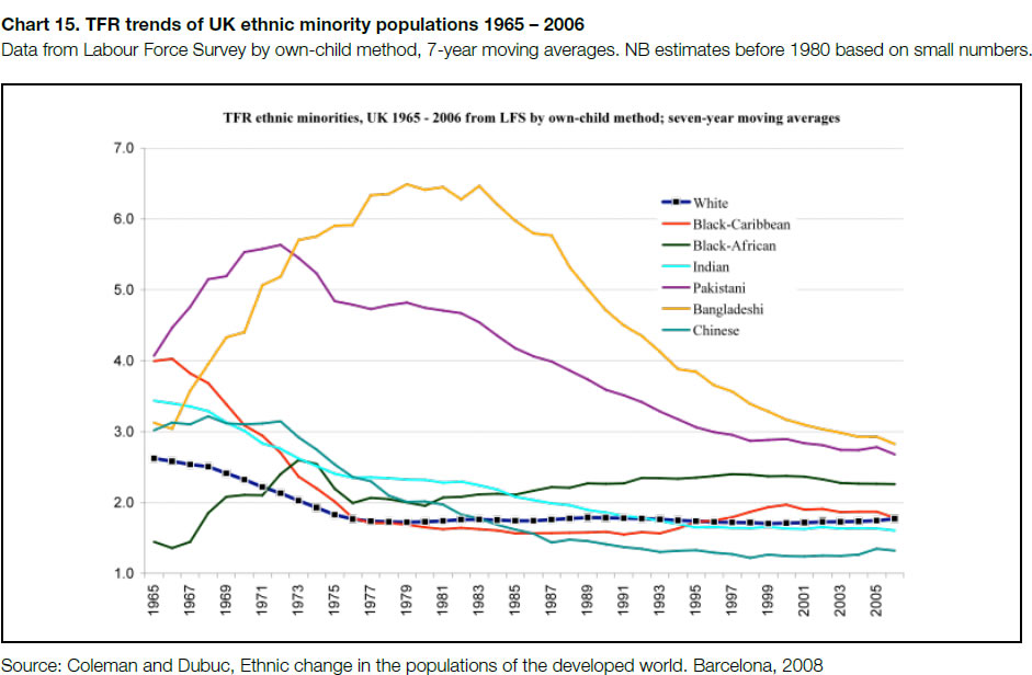 TFR-trends-of-ethnic-minority-populations-1965-2006