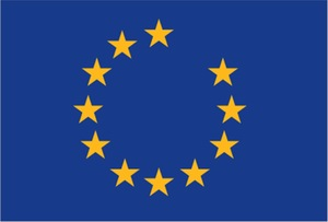 European-Union-flag-with-one-star-missing