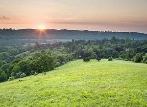 English-greenbelt