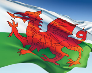Welsh-flag-flying-high