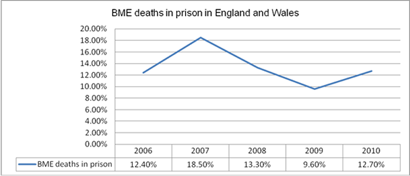 BME deaths in costody