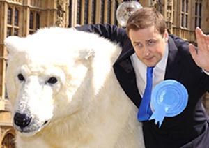 David Cameron polar bearj