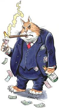 Greedy-fat-cat.jpg