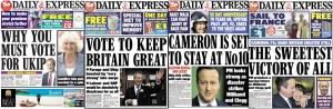 Daily Express UKIP Tory