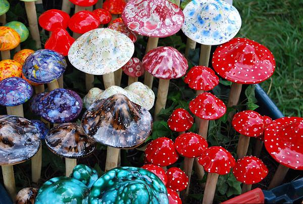 magicmushrooms