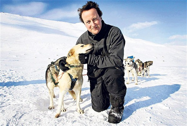 David Cameron husky