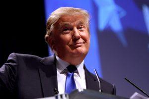 Trump Shurgs