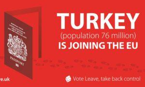 Vote Leave Turkey poster