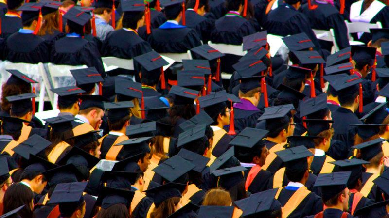 A floor of graduation caps