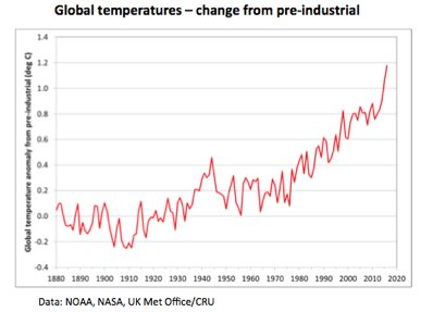 hottest-year-on-record